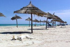 Tunesien strebt 10 Millionen Touristen an