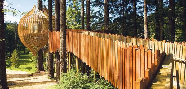 Foto: Redwoods Treehouse