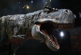 Dinosaurier – Prähistorische Giganten touren durch Europa