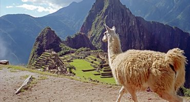 Die Teuerste Reise der Welt kostet 1,16 Millionen Euro