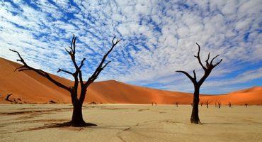 Surreale Landschaftsbilder