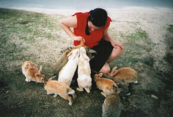 kaninchen6