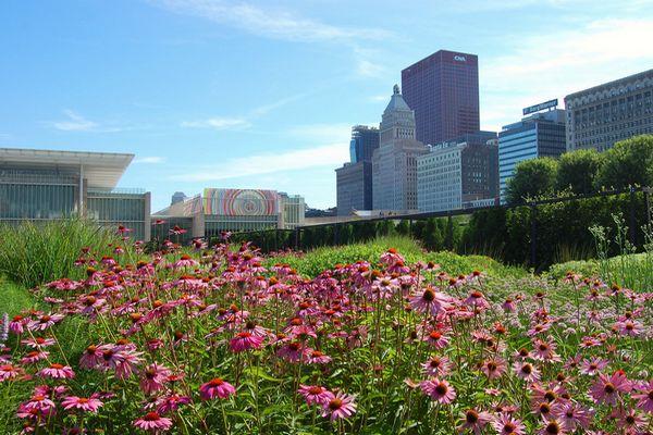 Lurie-Garden-Chicago-Millennium-Park-Dachgarten