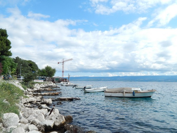 boote-omis