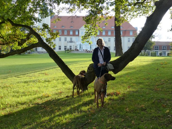 Dreierpack im Park vom Radisson Schloss Fleesensee