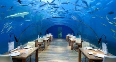 Verrückte Restaurants rund um die Welt