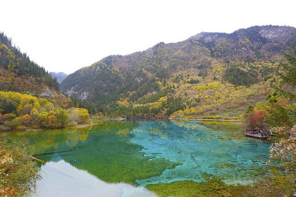 china-herbst