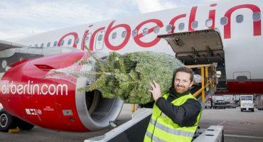 Bei airberlin fliegt der Weihnachtsbaum gratis mit