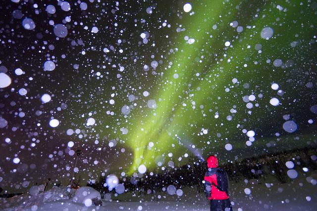 nordlichter-schnee