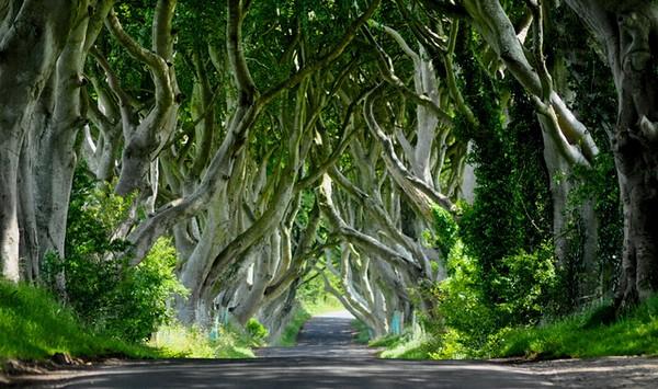 GOT-nordirland