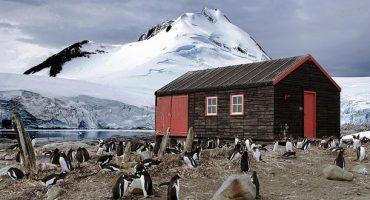 Jobangebot auf Antarktika