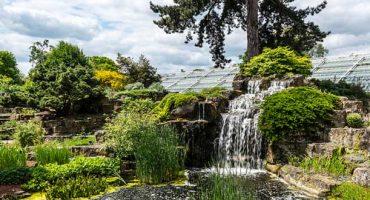 Die schönsten botanischen Gärten der Welt