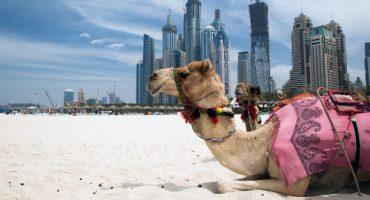 Gesundheitstourismus: Dubai Reiseziel des Jahres