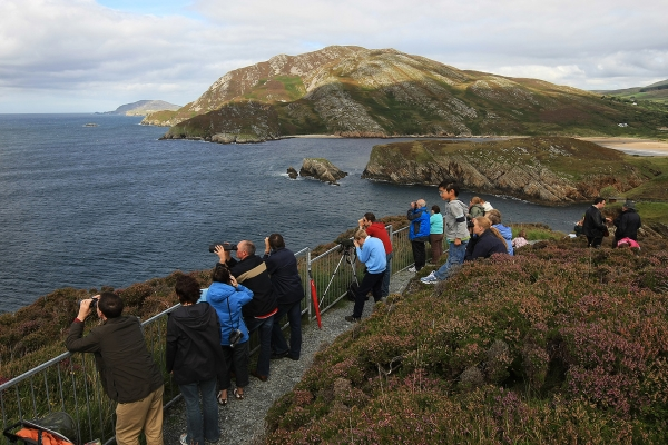 dunree-irland-walbeobachtung