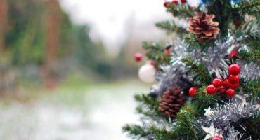 Weihnachten unterwegs: Das sind die verrücktesten Weihnachtstraditionen weltweit